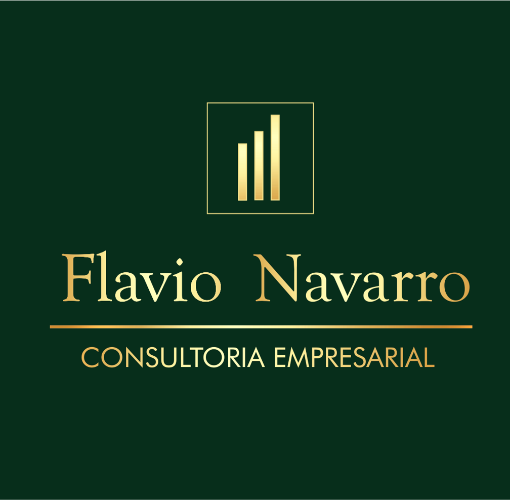 Flavio Navarro Consultoria