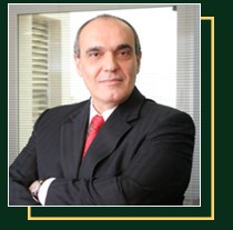 Flavio Navarro Biografia